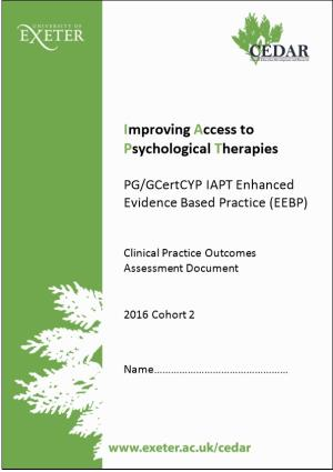 Clinical Practice Outcomes Assessment Document