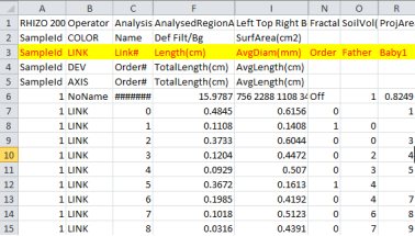 Tutorial Using an In-House VBA Software to Extract Diameter